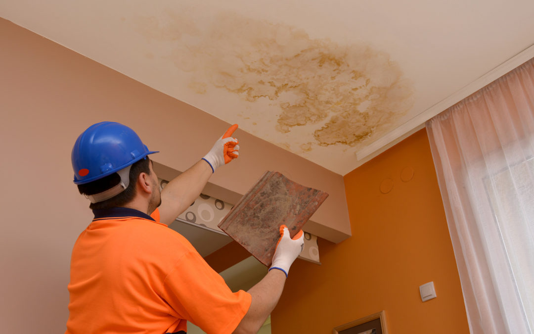 How to Tell If Your Roof Is Leaking: The Key Signs Explained